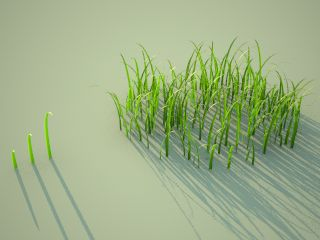 VRay clump of grass