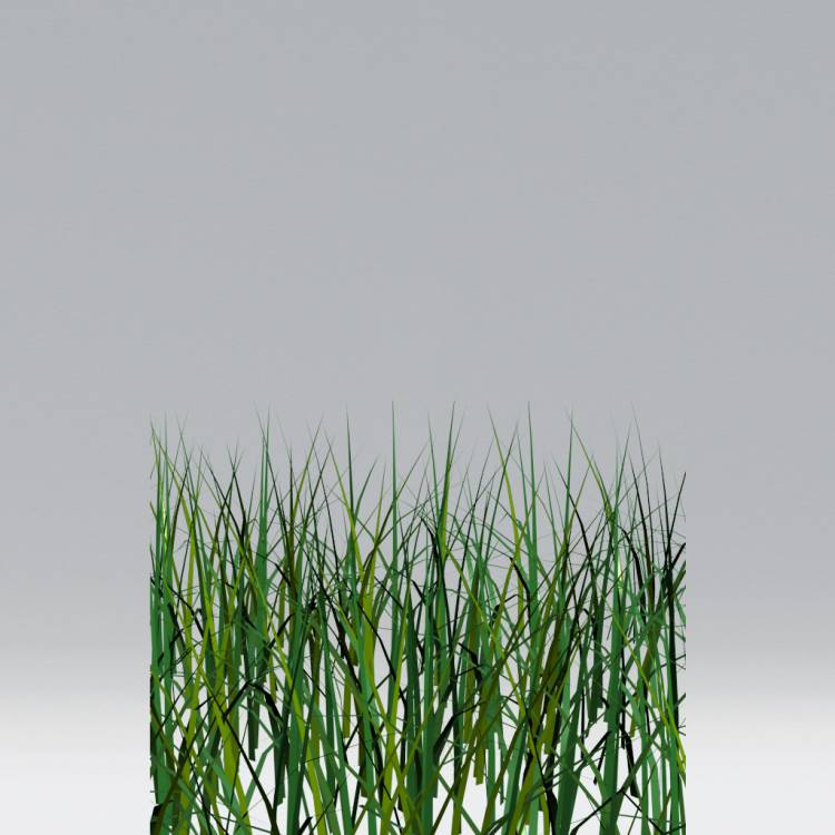 Grass Forest Pack Library For 3ds Max